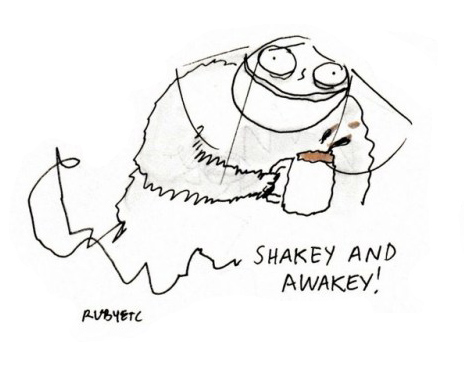 Shakey and awakey (cartoon)